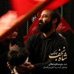 نماهنگ شاه نجف-احلی من العسل-عبدالرضا هلالی